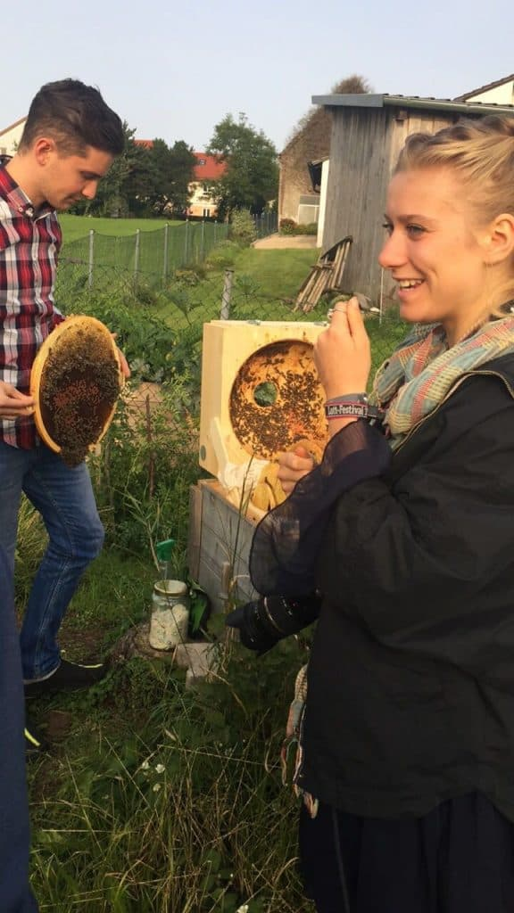 Eating fruits pollinated by bees - Truefoodsblog