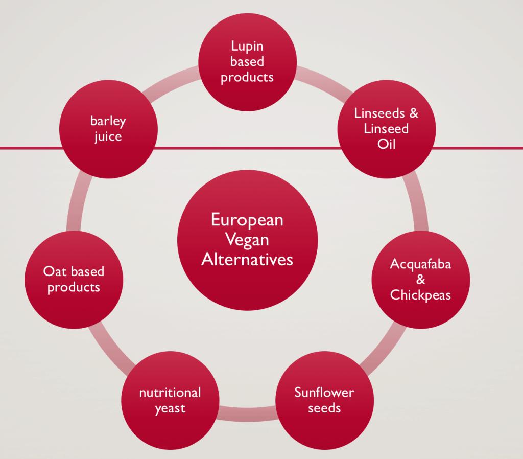 EU based Vegan Ingredients list by Moritz Truefoodsblog