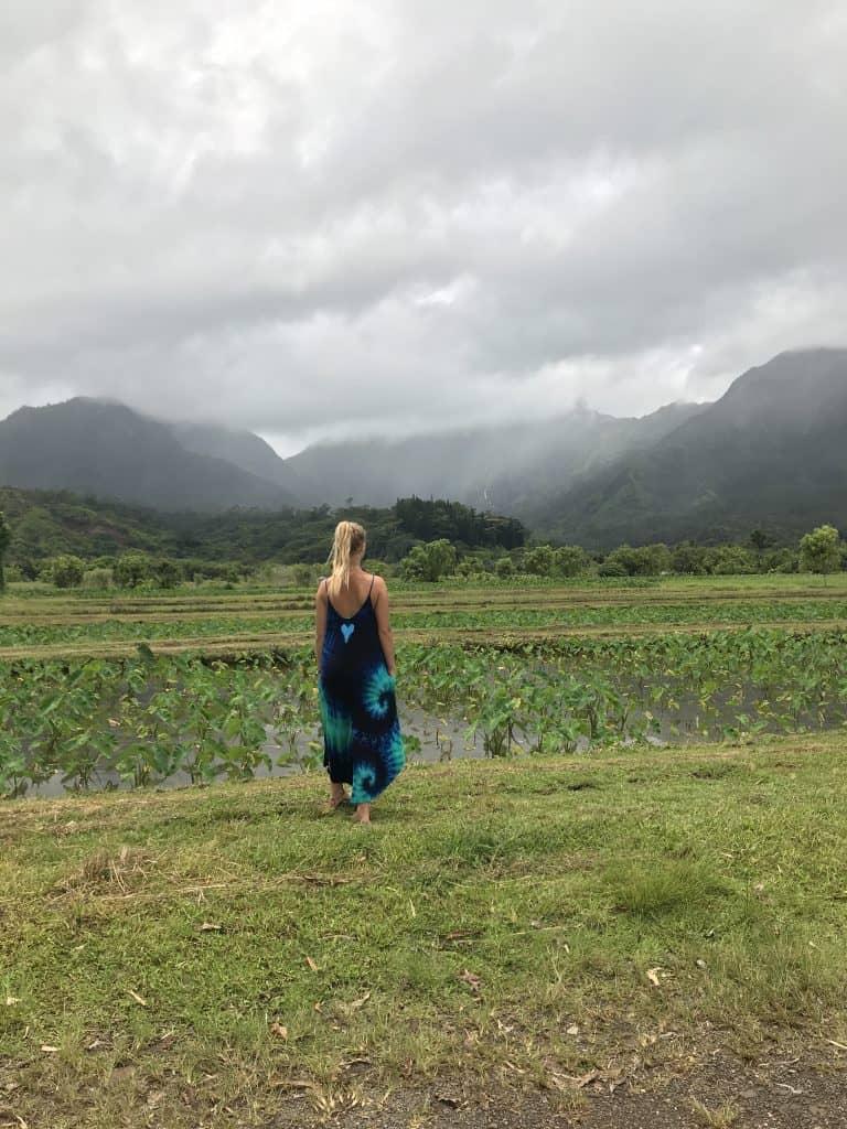 Hanalei Kauai by Truefoodsblog