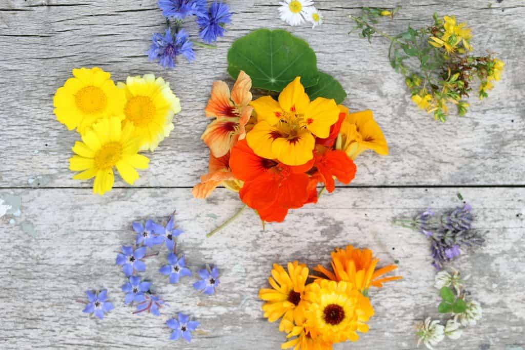 Edible Flowers by Truefoodsblog